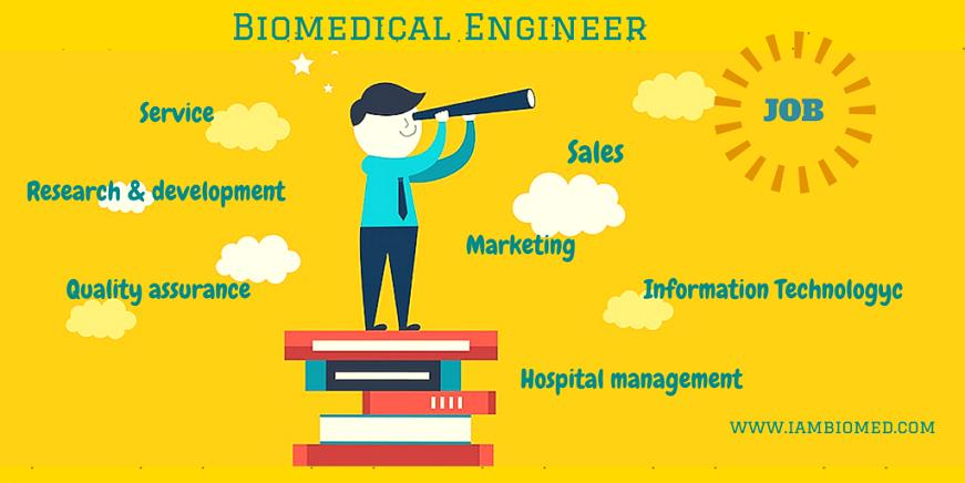 Why Do Biomedical Engineers Struggle To Find A Job